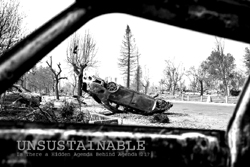 Click here to go to the UNSUSTAINABLE website